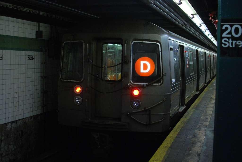 dsc1255.jpg