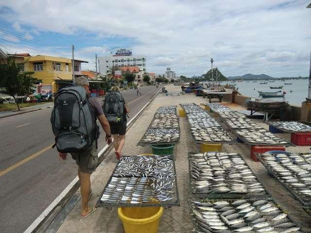 das Bild kennen wir ja schon vom Hinweg...die Fische lagen schon wieder da und nicht immer noch.. :-))